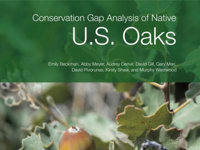 oak_gap_analysis_report_cover.jpg