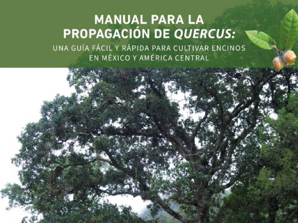 Quercus Propagation Manual Cover