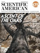 cover_scientific_american.jpg
