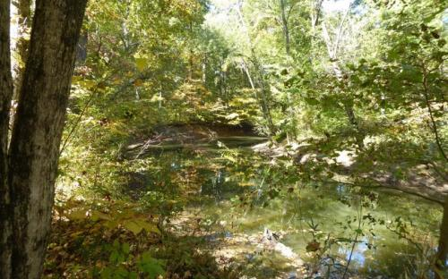 Little Black Slough Nature Preserve