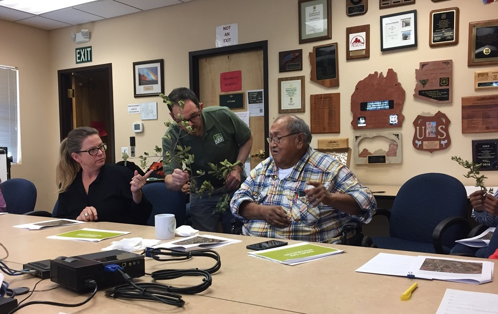 FS Staff discusses Emory oak with Apache Elder Vincent