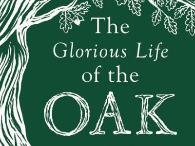 glorious_life_oak_cover.jpg