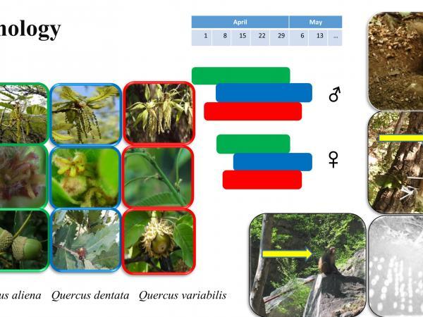 slide6_1.jpg